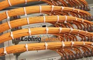 Ethernet Cabling Toronto